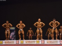 49th_asian_bodybuilding_and_physique_championships_in_tashkent_2015_day-3st_semifinals_02_oct_00048