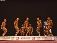 49th_asian_bodybuilding_and_physique_championships_in_tashkent_2015_day-3st_semifinals_02_oct_00062