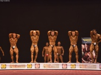 49th_asian_bodybuilding_and_physique_championships_in_tashkent_2015_day-3st_semifinals_02_oct_00063
