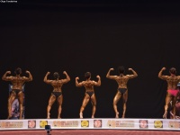 49th_asian_bodybuilding_and_physique_championships_in_tashkent_2015_day-3st_semifinals_02_oct_00087