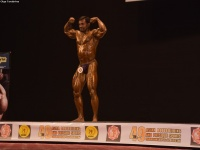 49th_asian_bodybuilding_and_physique_championships_in_tashkent_2015_day-4st_semifinals_03_oct_00381