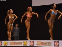 49th_asian_bodybuilding_and_physique_championships_in_tashkent_2015_day-5st_finals_and_farewell_party_04_oct_00157