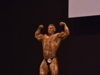 49th_asian_bodybuilding_and_physique_championships_in_tashkent_2015_day-5st_finals_and_farewell_party_04_oct_00654