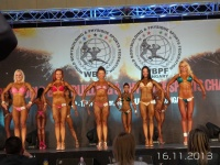 5th-wbpf-world-bodybuilding-physique-sports-championships-2013_33