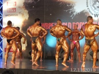 5th-wbpf-world-bodybuilding-physique-sports-championships-2013_49