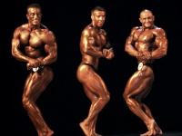 championship_uzbekistan_on_bodybuilding_and_fitness_2014_wbpf_323
