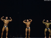 uzbekistan_gi_bodybuilding_fitness_championship_2019_uzfbf_00205