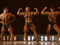 uazbekistan-cup-bodybuilding-and-fitness-championship-2017_0289
