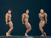 bodybuilding-proform-classic-2014_105