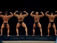 bodybuilding-proform-classic-2014_149
