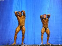 uzfbf_jizak_bodybuilding_fitness_championships_2017_0048