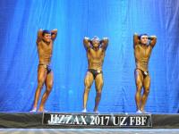 uzfbf_jizak_bodybuilding_fitness_championships_2017_0079