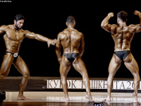 uzfbf_tashkent_cup_bodybuilding_fitness_championships_2017_0367