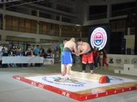 mas-wrestling_proform-classic-2014_118