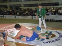 mas-wrestling_proform-classic-2014_22