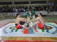 mas-wrestling_proform-classic-2014_89